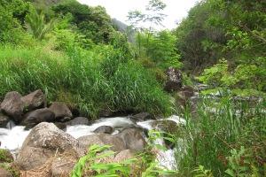 Iao Vallay National Park