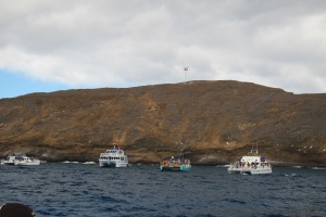 Visitors to Molokini
