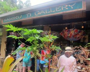Nahiku Ti Gallery