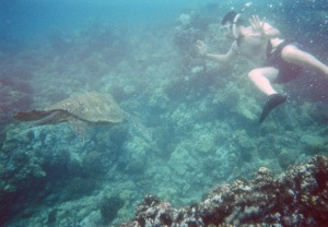 Sea Turtle and hubby