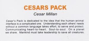 Cesars Pack