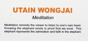 Utain Wongjai