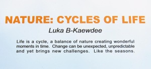 Nature: Cycles of Life