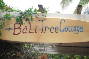 Bali Tree Cottage