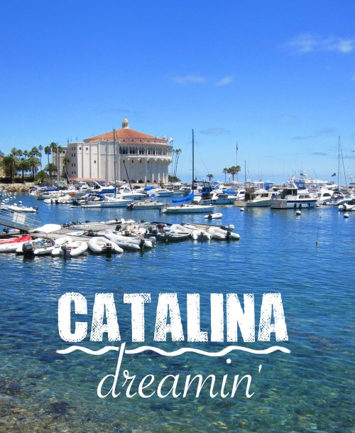 Catalina Dreamin'